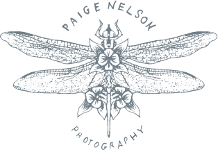 Paige Nelson Photography